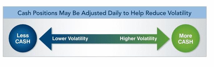 Merrill lynch strategic balanced index daily rebalancing infographic
