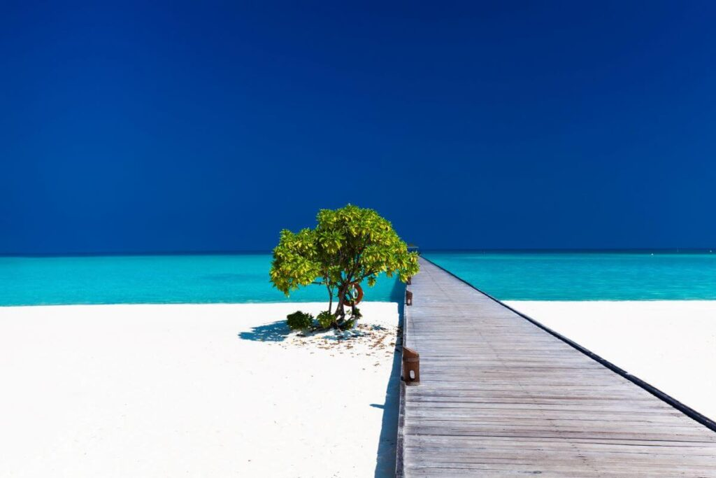 Beautiful Beach for retirement annuity income riders top 20 page