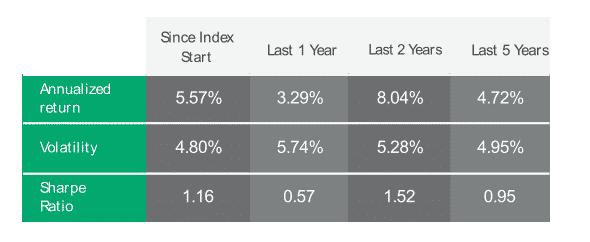Bnpimad5 index performance summary table last 1 year, last 2 years, last 3 years